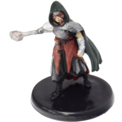 Human Warlock of the Fiend (20a)